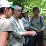 Upcoming Educator Workshop: Service Learning    Focus: Invasive Species and Forest Ecology
